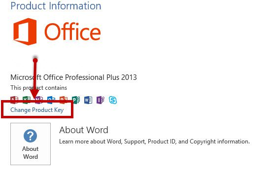 Active Office 2013 Professional Plus CMD