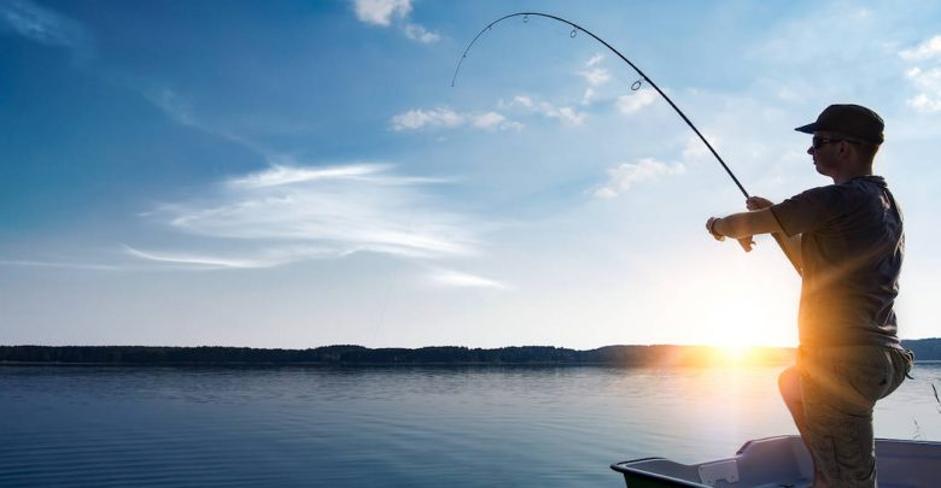 Nằm mơ thấy câu được cá trắng