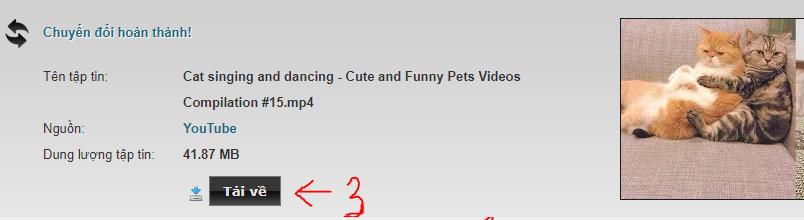 Cách tải Youtube về máy tính