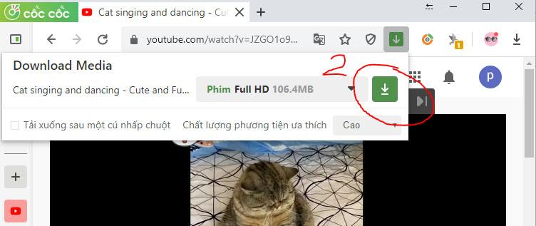Cách tải video trên YouTube về máy tính bằng Chrome
