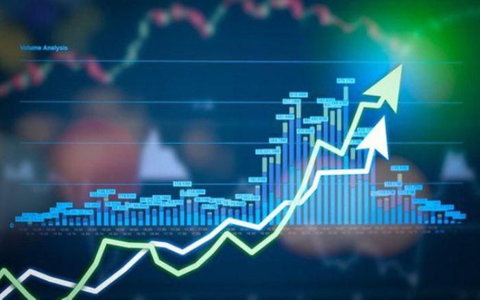 Bạn cần có kiến thức chuyên sâu liên quan đến chứng khoán trước khi đầu tư