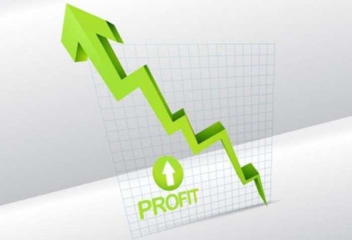 Net profit hay còn gọi là lợi nhuận ròng là mục tiêu mà mọi doanh nghiệp hướng đến
