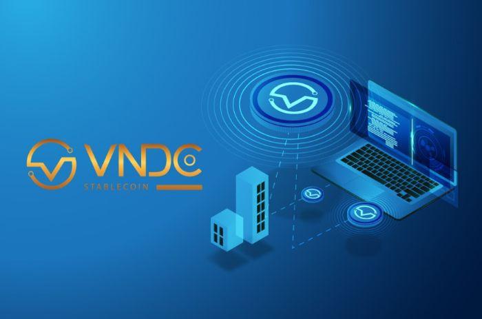 Có nhiều cách đầu tư VNDC
